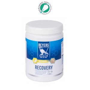 Recovery Plus 600gr