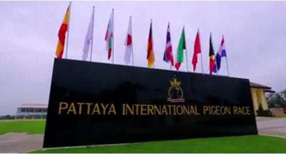 Antrenament 30km al Columbodromului Pattaya - Thailanda 2020