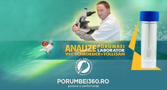Analize laborator Vet Schroeder Tollisan