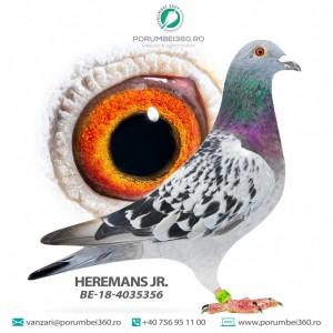 HEREMANS JR.