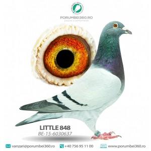 LITTLE 848