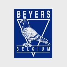 Beyers (hrana porumbei)
