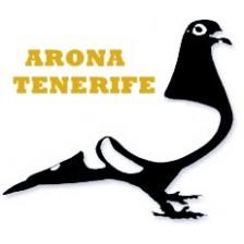 Derby Arona Tenerife OLR