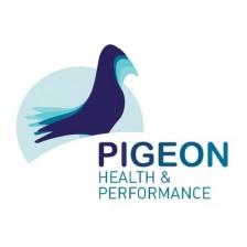HP PIGEON